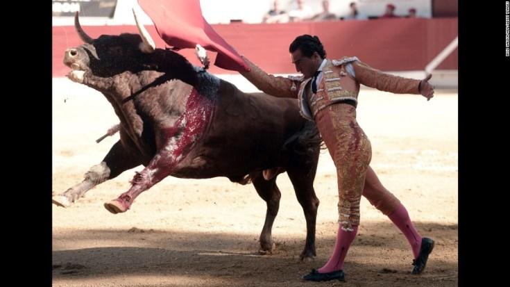 Spanish matador Ivan Fandino performs during a bullfight.