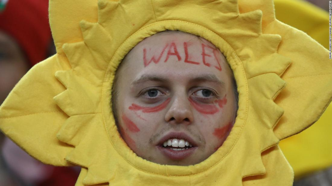 A happy Wales fan takes in the action in Cardiff as Wales trounce Scotland.