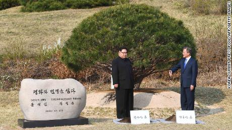 Leaders of North and South Korea participate in a tree-planting ceremony next to the Military Demarcation Line that forms the border between the two Koreas.