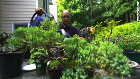 Gardening Becomes Healing With Horticultural Therapy Cnn