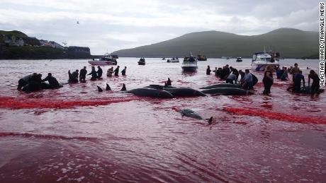 People participate in the whaling event on July 30.