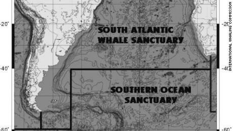 Limits of the proposed South Atlantic Whale Sanctuary.