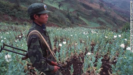 A United Wa State Army soldier in a poppy field in 1995.