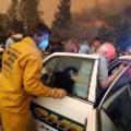 08 california wildfire 1108 camp fire