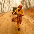 38 califronia wildfires 1110