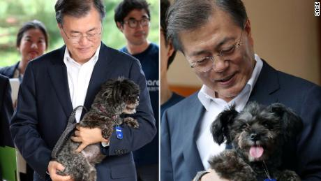 South Korean President Moon Jae-in and his shelter dog, Tori.