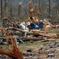 14 tornado 0304 alabama