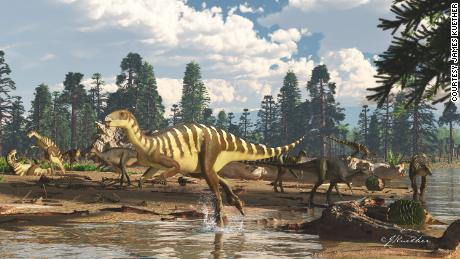 Dinosaur fossil found in Australia was about the size of a wallaby