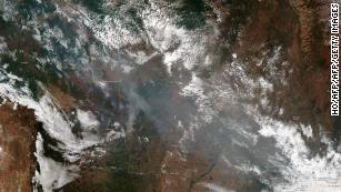 Fires are raging in the Amazon forest. Here's how you can help slow all rainforest loss