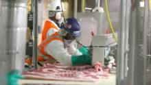 Why Meat Processing Plants Become Covid-19 Homes