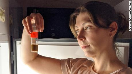 In a lab incubator, neuroscientist Sophia Axelrod examines fruit fly strains, placed in precisely defined light / dark cycles to correct their circadian rhythms.