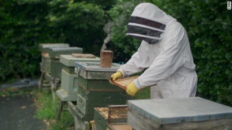 मधुमक्खी पालक साइमन लिंच अपने पित्ती में ApisProtect द्वारा बनाए गए एक स्मार्ट सेंसर डिवाइस का उपयोग करता है।