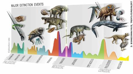 Summary of major extinction events through time, uncovering newly identified Carnician pluvial episodes 233 million years ago.