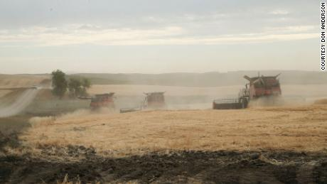 Some of the 11 combines at work harvesting Lane Unhjems farm near Crosby, North Dakota.