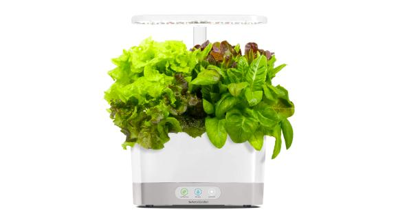 AeroGarden White Harvest Indoor Hydroponic Garden