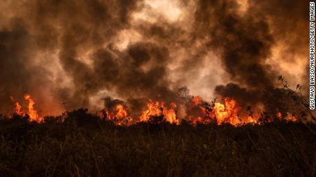 ไฟป่าที่ไม่สามารถควบคุมได้ได้เผาพื้นที่ของ Pantanal ของบราซิลในเขตชนบทของ Mato Grosso