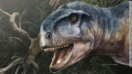 Newly discovered T. rex lookalike with an unusual skull terrorized Patagonia 80 million years ago
