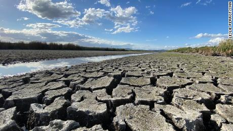 How drought is playing out in Tule Lake National Wildlife Refuge in Northern California.