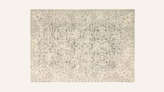 Alfonso Oriental Silver Area Rug Rectangle 5' x 7'6