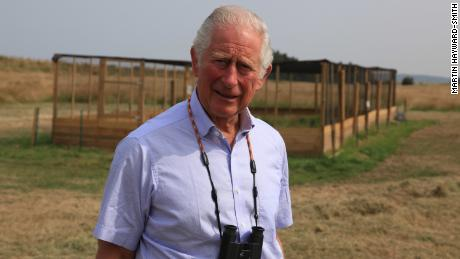 Prince Charles during the release of a threatened bird species in Sandringham.