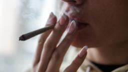 210917002113 02 marijuana smoking stock hp video - scoailly keeda