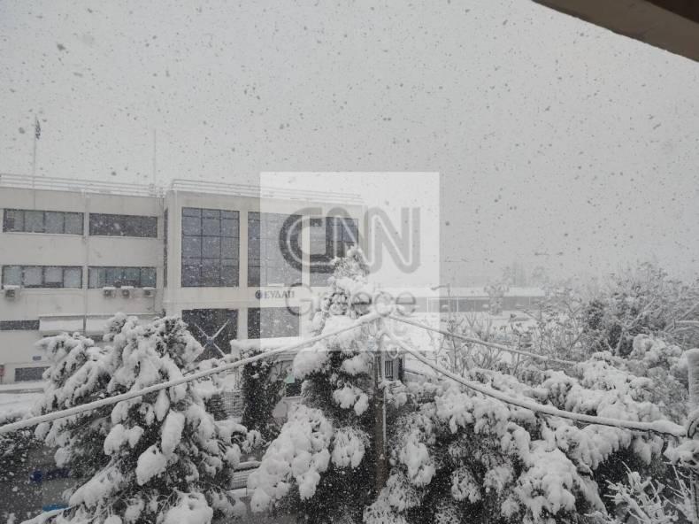 https://cdn.cnngreece.gr/media/news/2021/02/16/254706/photos/snapshot/nea_ionia_mideia.jpg