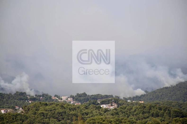 https://cdn.cnngreece.gr/media/news/2021/05/20/266633/photos/snapshot/fotia-loutraki-5.jpg
