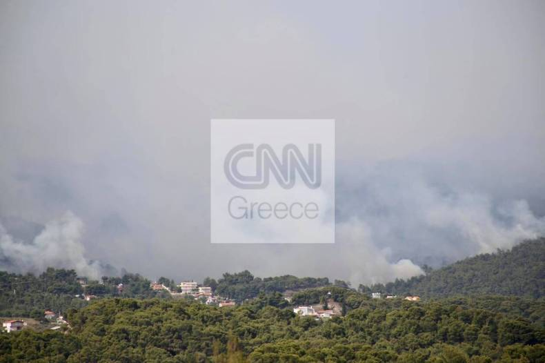 https://cdn.cnngreece.gr/media/news/2021/05/20/266726/photos/snapshot/fotia-loutraki-5.jpg