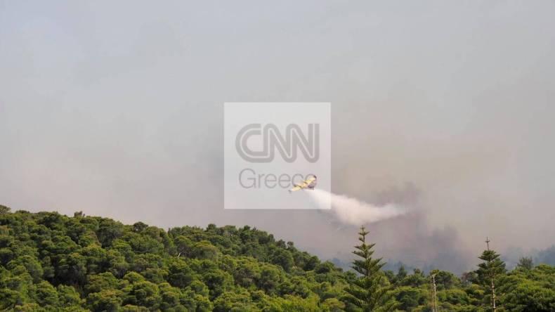 https://cdn.cnngreece.gr/media/news/2021/05/20/266726/photos/snapshot/fotia-sxinos-5.jpg