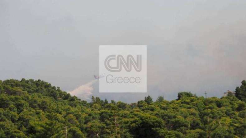 https://cdn.cnngreece.gr/media/news/2021/05/20/266726/photos/snapshot/fotia-sxinos.jpg