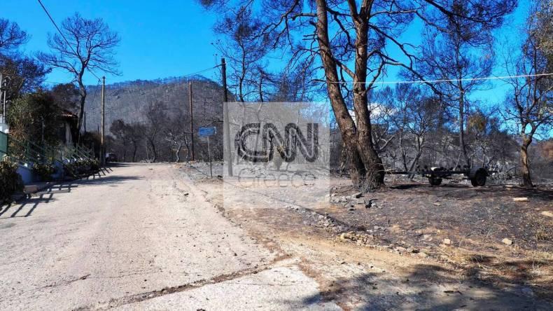https://cdn.cnngreece.gr/media/news/2021/05/21/266816/photos/snapshot/fotia-sxino-10.jpg