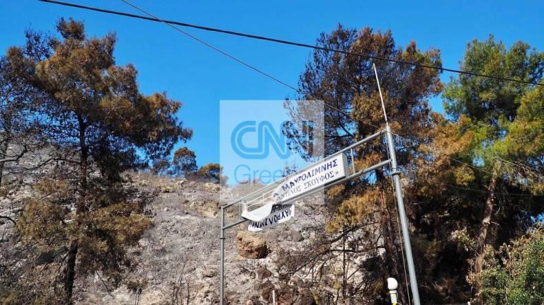 https://cdn.cnngreece.gr/media/news/2021/05/21/266816/photos/snapshot/fotia-sxinos-2.jpg