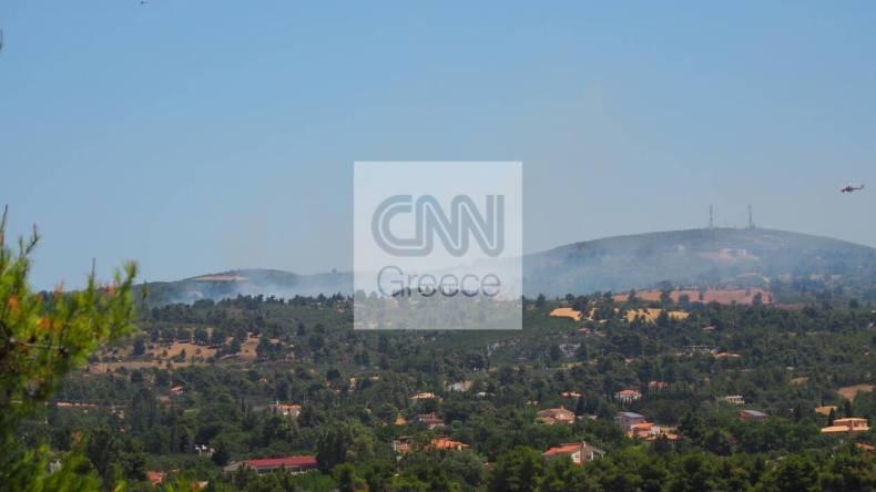 https://cdn.cnngreece.gr/media/news/2021/07/10/273567/photos/snapshot/varnavas1.jpg