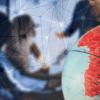 なぜ、南アフリカの仮想通貨事情が今熱いのか:4つの理由