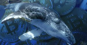 仮想通貨のクジラが「取引所外の売買と新品コイン」を好む理由:最大20%のプレミアムも