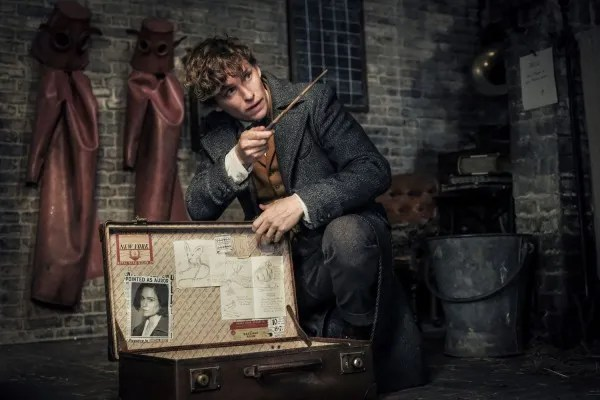 fantastic-beasts-the-crimes-of-grindelwald-newt-eddie-redmayne