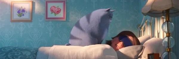 the-secret-life-of-pets-trailer-cat