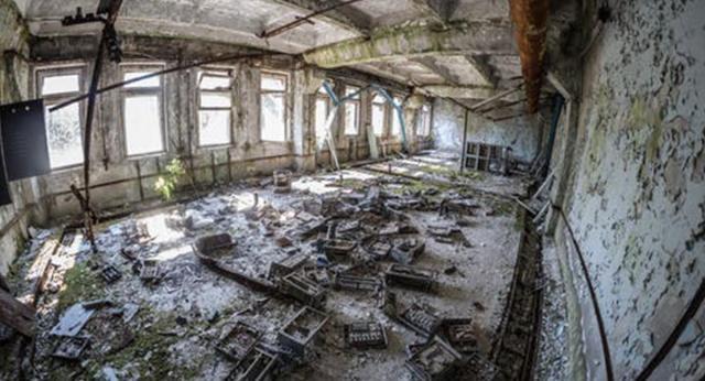 """Algunos piensan que las zonas de exclusión tiene """"monstruos mutantes"""". Foto: Pexels"""