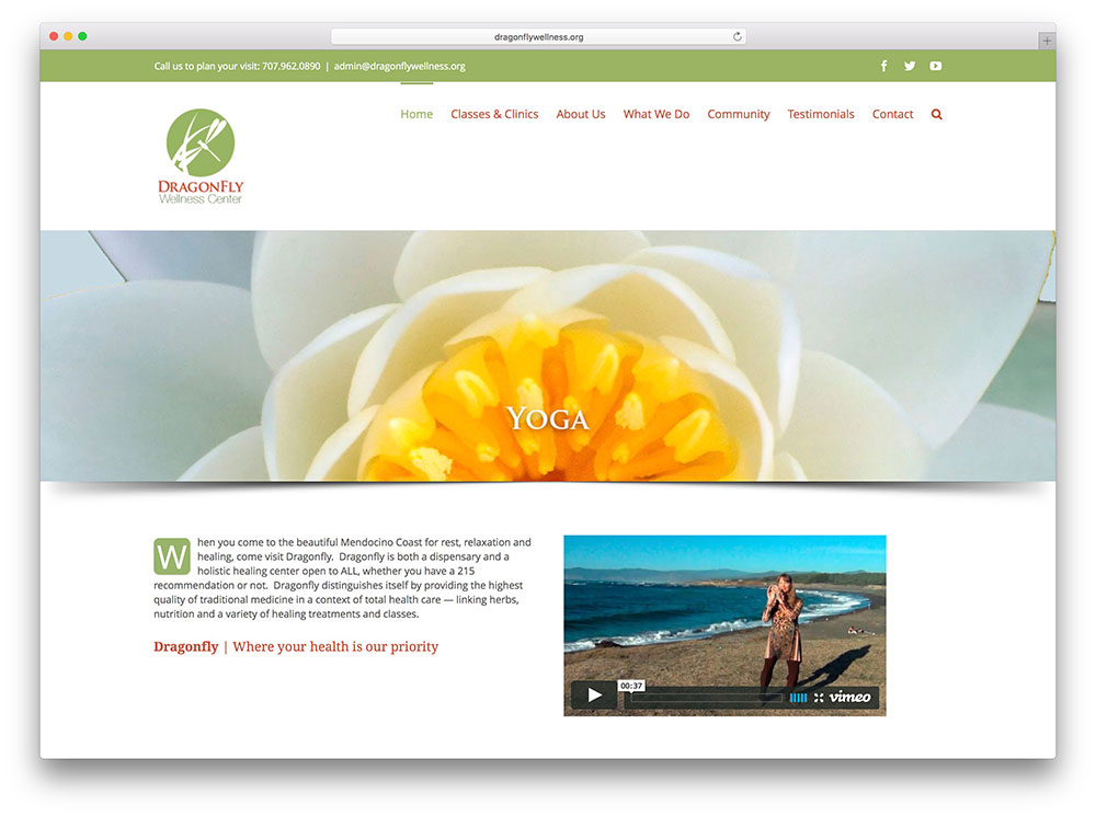 Avada Page Templates  avada free web template view just free