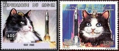 Félicette, la gata espacial