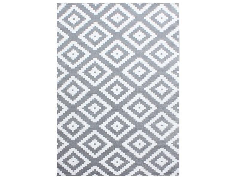 scandinave tapis de salon moderne 120 x 170 cm gris blanc