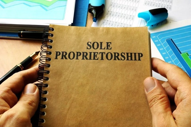 Sole Proprietorship - Definition, Advantages and Disadvantages