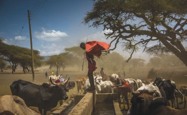 NPT 100 -- Conservation International Kenya. Photo: Charlie Shoemaker