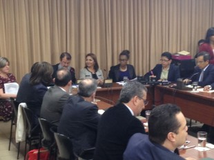 Ana Lorena Brenes en comparecencia ante la Comisión de Ingreso y Gasto. CRH.