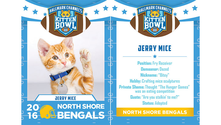 Jerry Mice North Shore Bengals 2016