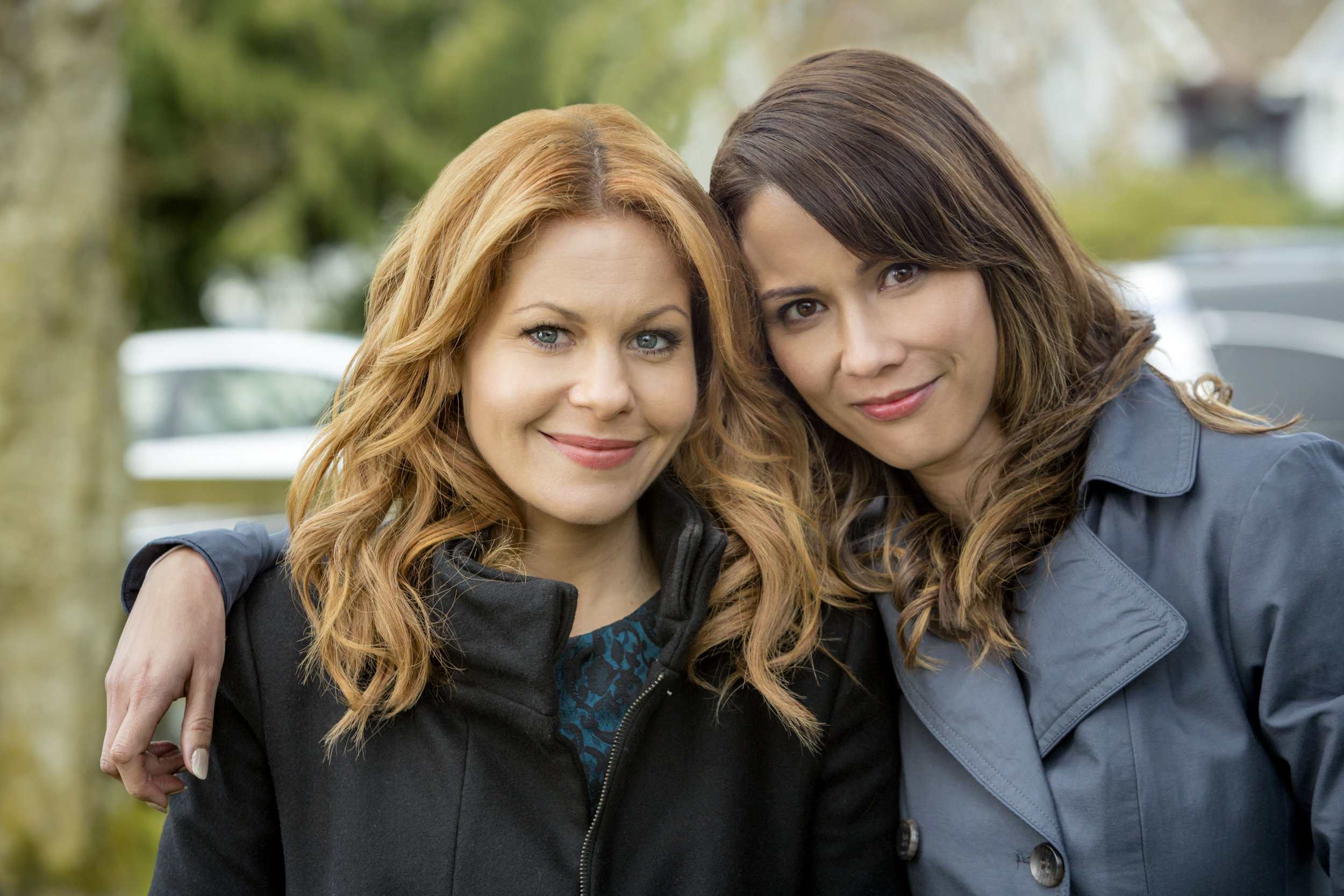 About Aurora Teagarden Mysteries Three Bedrooms One