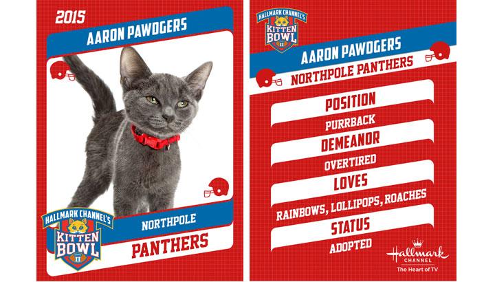 Aaron Pawdgers 2015