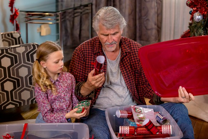 cast i ll be home for christmas 2017 hallmark ysteries - Ill Be Home For Christmas Cast