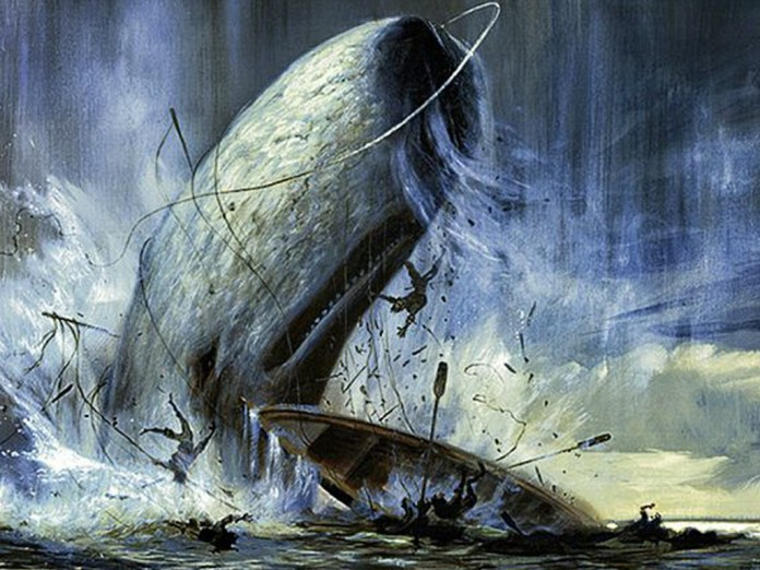 "Bitcoin Whales are proving to be just as elusive as the fictitious white whale in Herman Melville's seminal novel ""Moby Dick."""