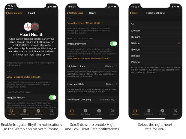 Set up heart notifications in the iPhone Watch app